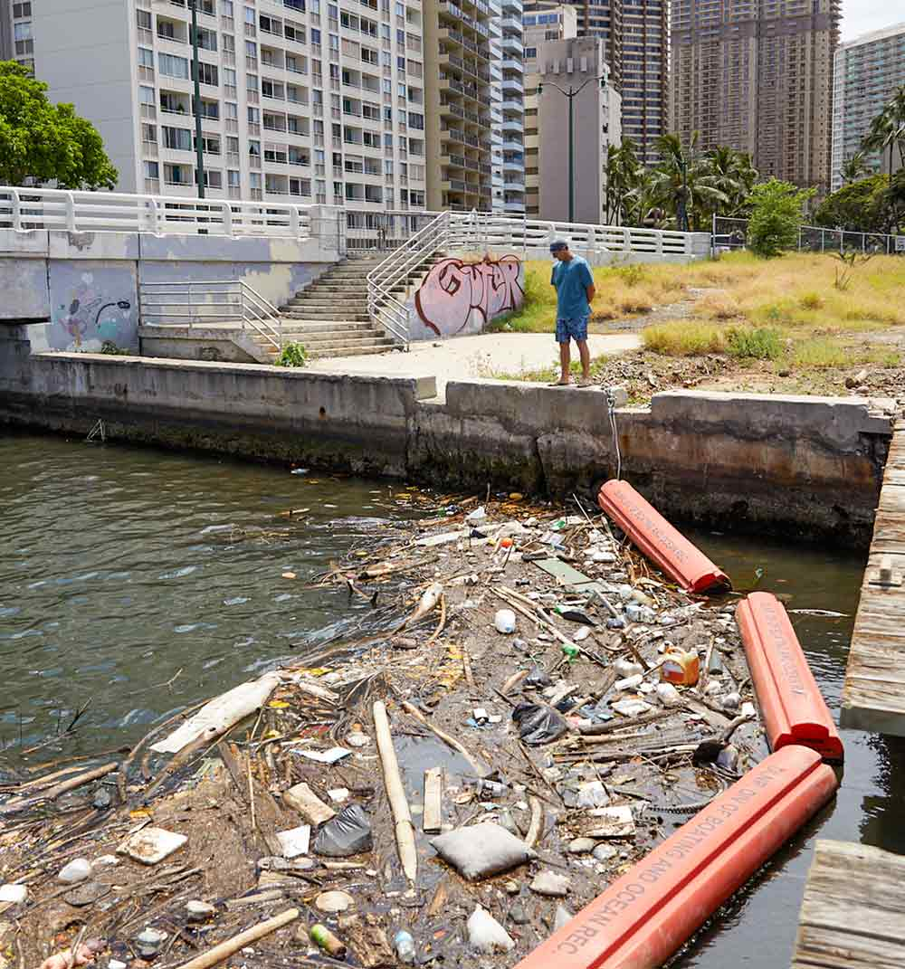 A person looking into a harbor where ocean pollution has gathered.